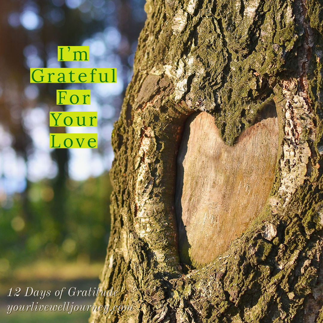 Day 10 ~ The 12 Days of Gratitude