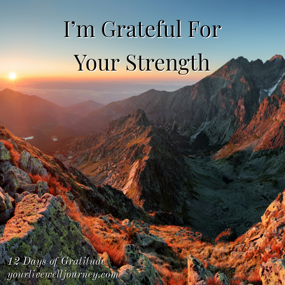 Day 11 ~ The 12 Days of Gratitude