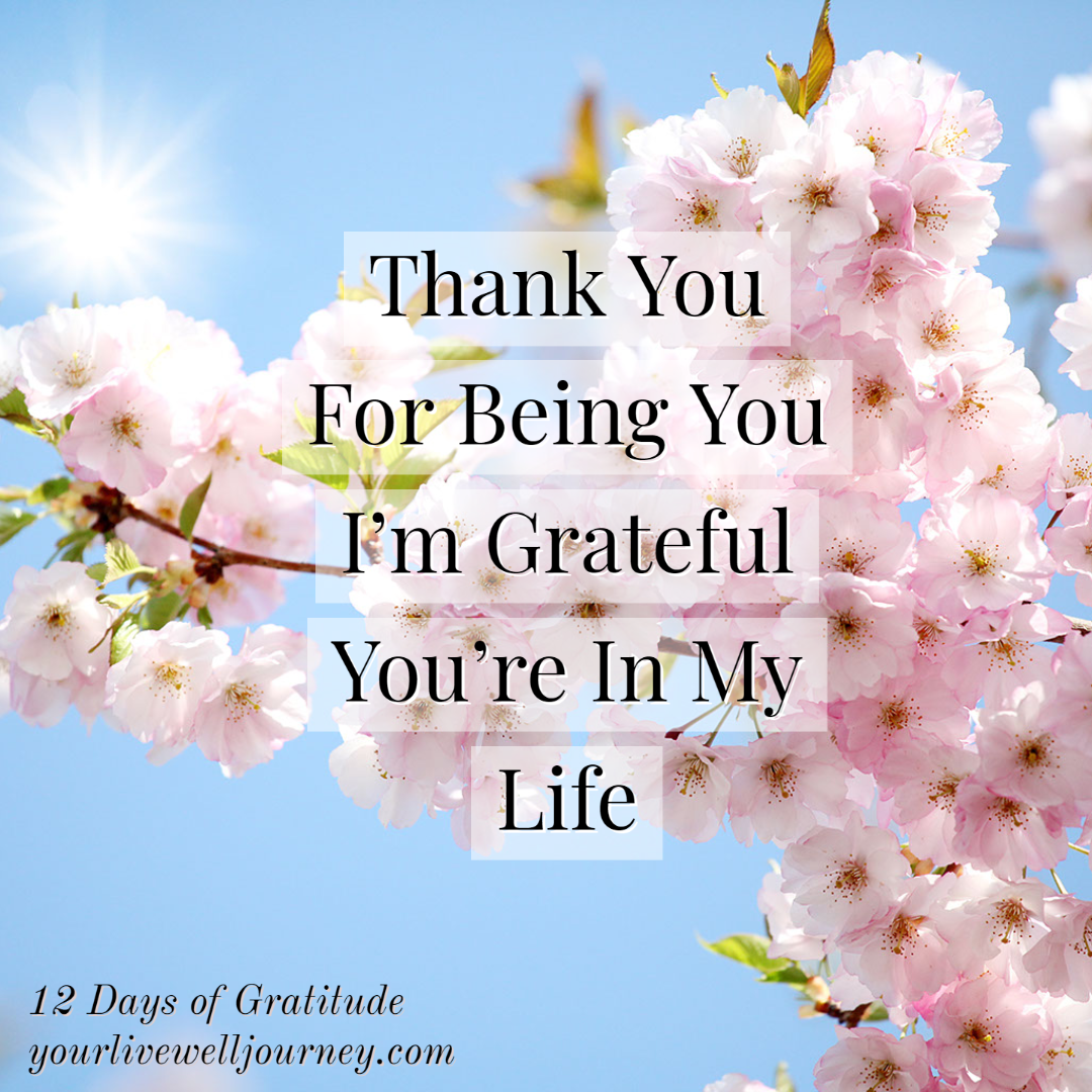 Gratitude Post for the 12 Days of Gratitude - Day 12