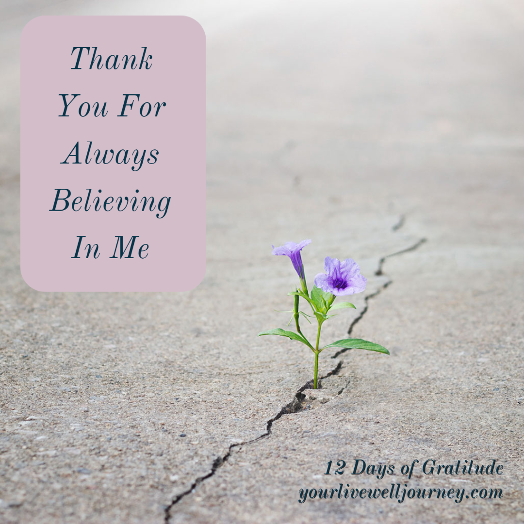 Gratitude Post for the 12 Days of Gratitude - Day 8