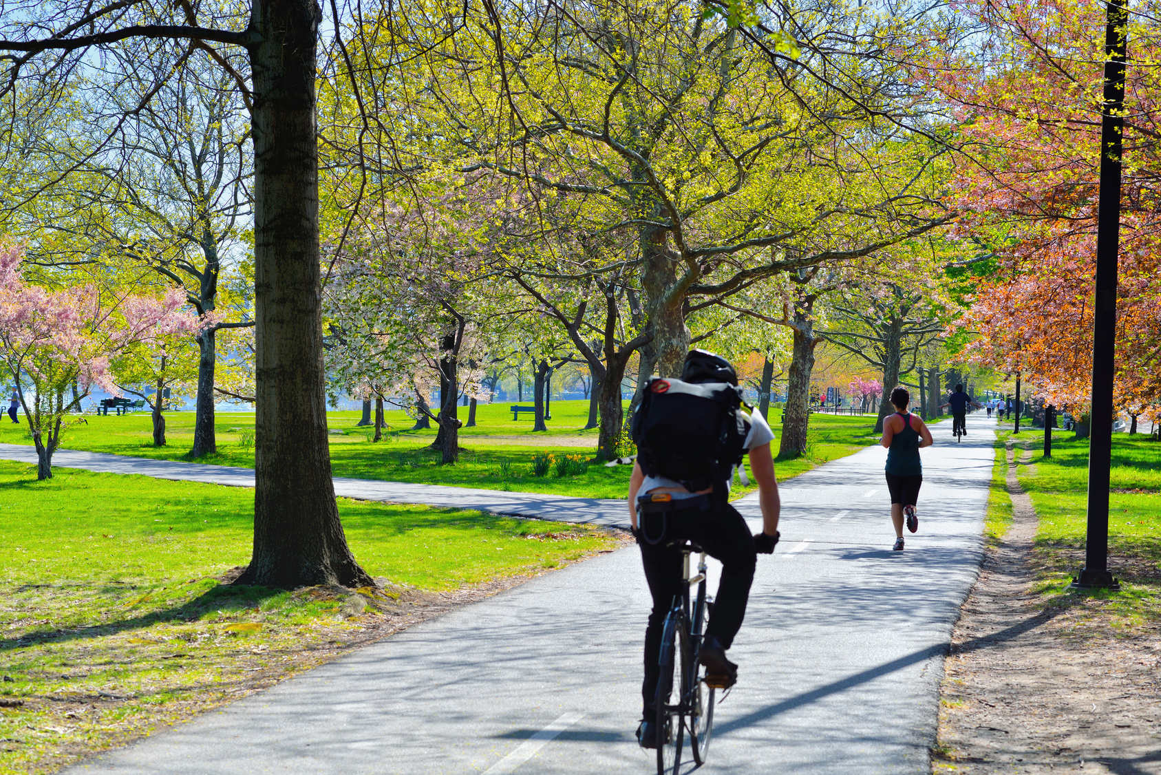 People cyclin and running on a bike path