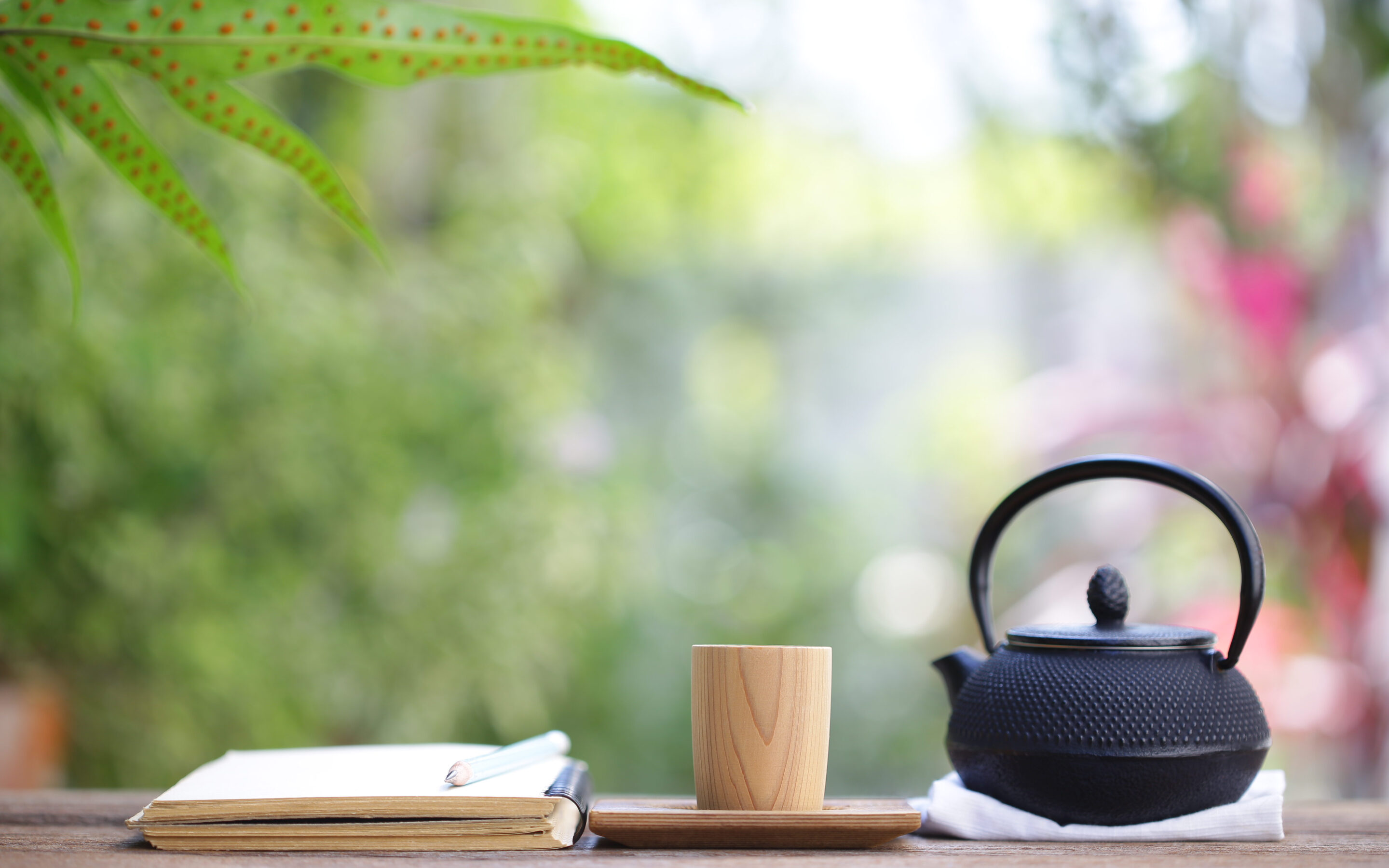Teapot, cup and journal outside representing quiet time for self