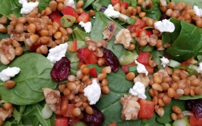 Greens and Lentil Salad