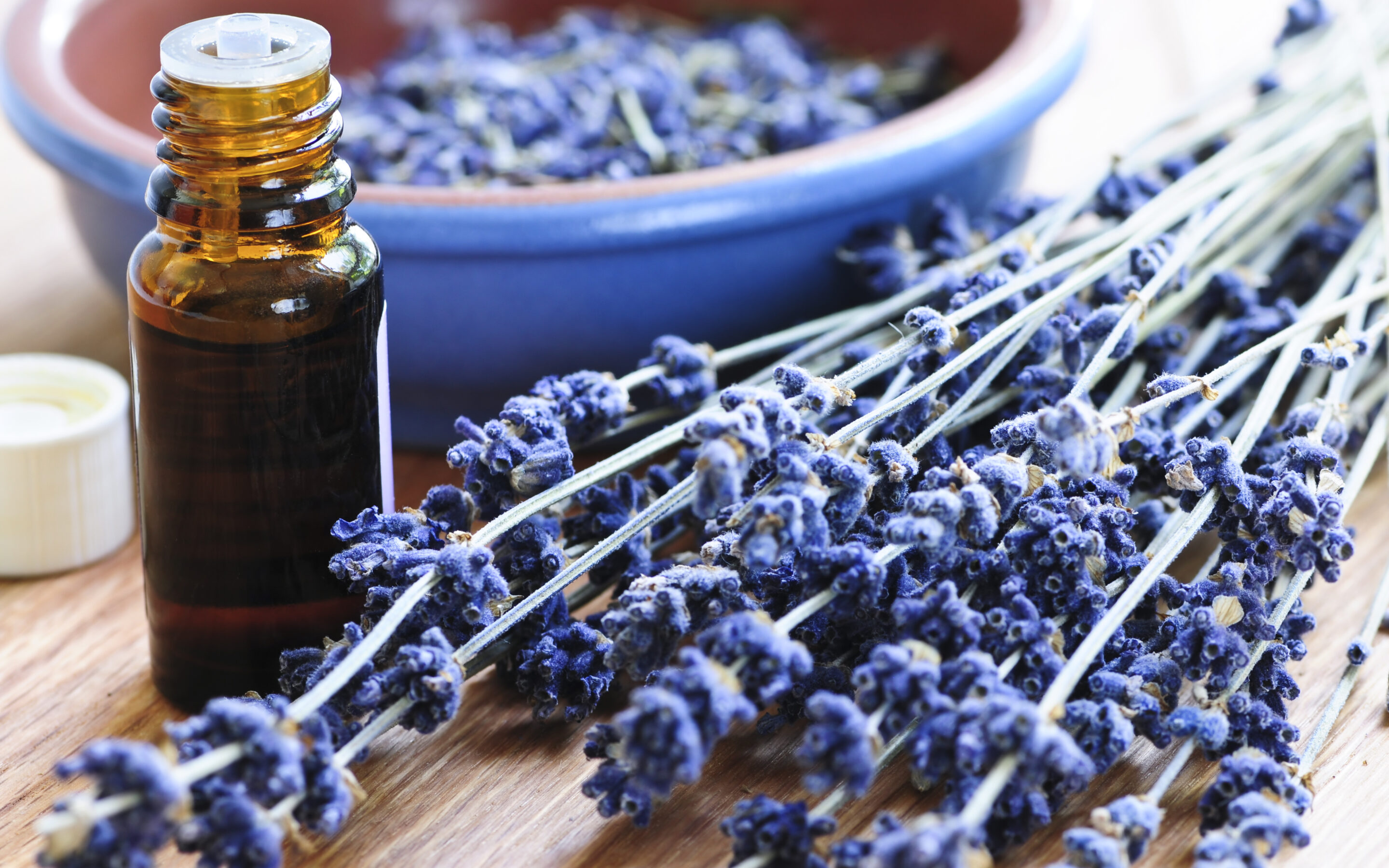 Lavender Essential Oil ~ Benefits & Uses